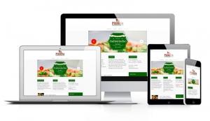 webdesign-responsive-pizzeria